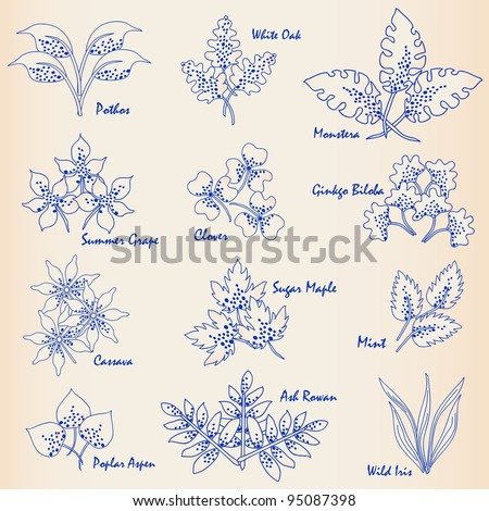 Hand Drawn Leaves Icons - stock photo