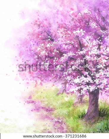 Hand drawn watercolor illustration. Nature landscape.  Spring background with pink blossoming sakura tree.  - stock photo