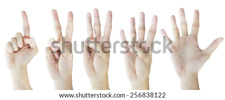 Hand Gestures in White Background - One to Five Fingers - stock photo