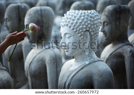 hand give respect by lotus flower to buddha image - stock photo