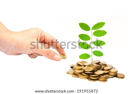 hand giving a golden coin to trees growing on coins