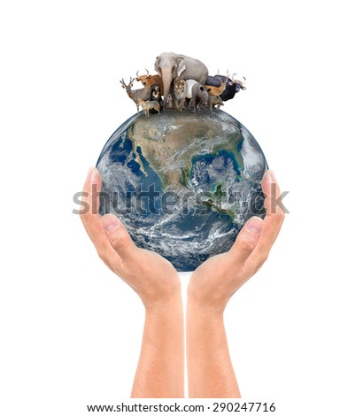 hand hold animal on the earth, Element of this image are furnished by NASA - stock photo