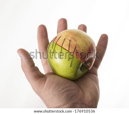 hand hold apple part manipulated fruit with thread ceep couple together ??forced unification two parts in one surgery Organ Transplantation mergers idea weddings marriage sex union between breeding - stock photo