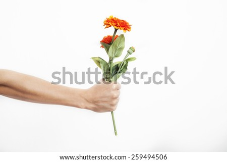 Hand holding a flower