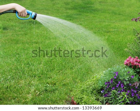 Hand holding a hose watering flowers - stock photo