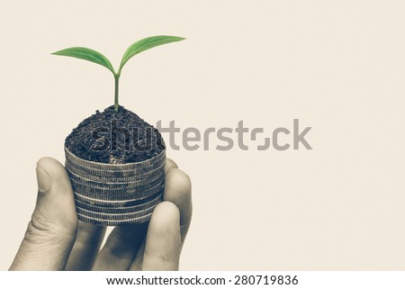 Hand holding a tree growing on old coins / Business with csr practice - stock photo