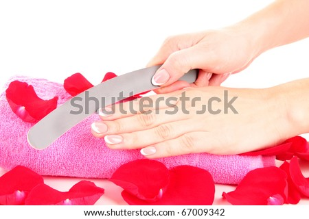Hand holding an emery board on rose petals background - stock photo