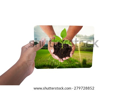 hand holding board environment concept ,save the world - woman hand holding Green view natural hand hold tree