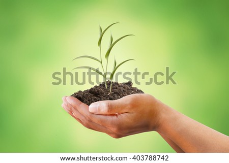 Hand holding creeping plant on soil with beautiful blurred green background. metaphoric for World Environment Day, Economy, Conservation, Climate change. - stock photo