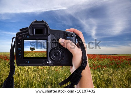 hand holding digital photo camera and taking landscape photography - stock photo