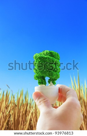 hand holding eco light bulb on hay background, energy concept