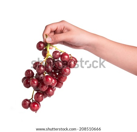 Hand holding grapes isolated on white background - stock photo