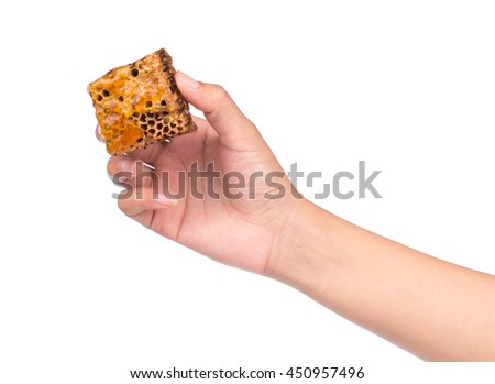 hand holding Honeycombs isolated on white background