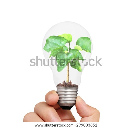 Hand holding light bulb with young green plant, green energy concept