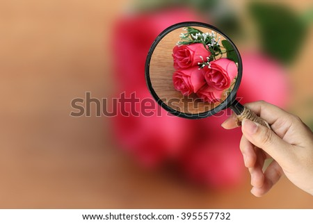 hand holding magnifier with artificial roses on wooden background - stock photo