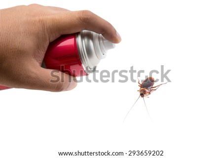 Hand holding mosquito spray isolate on white background  - stock photo