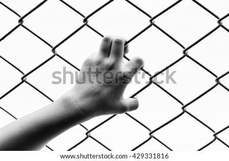 Hand holding on chain link fence , black and white. Concept of imprisonment.Closeup of hand in jail.Handle steel mesh.Left human hand in the cage.grab,Handle steel mesh cage lack of independence. - stock photo