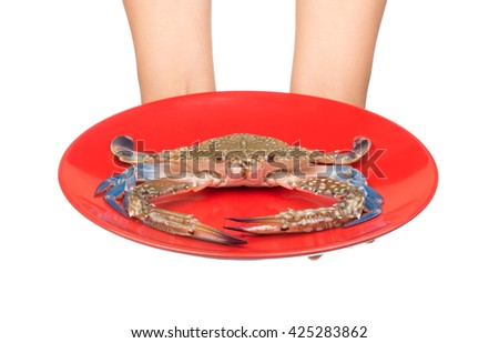 hand holding raw crab on a red plate isolated on white background.