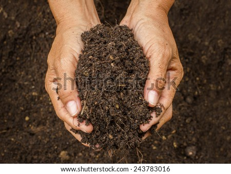 Hand holding soil,Hand dirty with soil - stock photo