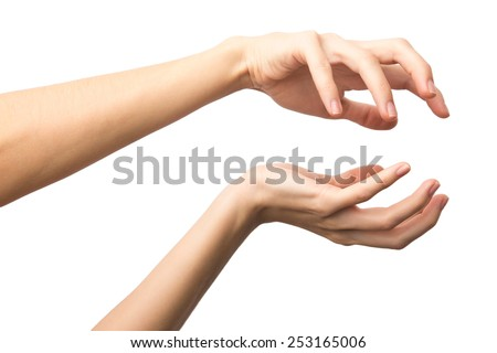 Hand holding sphere. Two hands protecting something isolated on white background. Alpha.  - stock photo