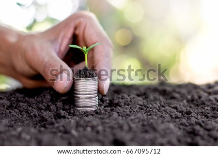 Hand holding stacked coins with seedlings growing on top.