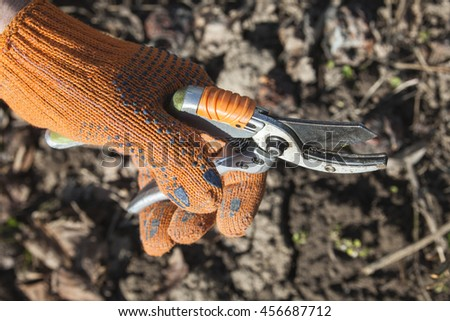 Hand holding the pruning shears. Close up