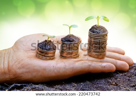 hand holding trees growing on stacks of coins arranged as a graph - business with csr concept - stock photo
