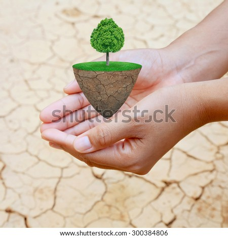 Hand holding trees on the lawn. Natural concept. - stock photo