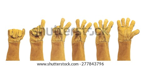 hand in leather work gloves Isolated on a white background.count number