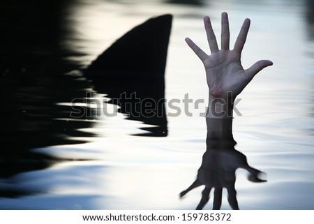 hand in ocean with shark fin. - stock photo