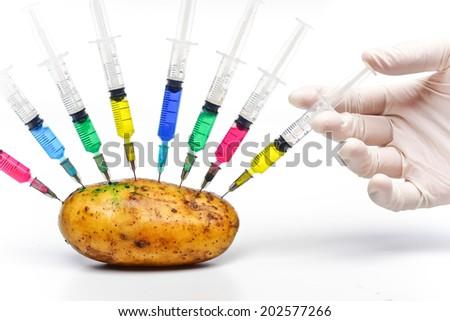 hand injecting chemical into gmo potato - gmo food - stock photo