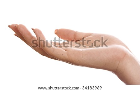 Hand isolated on a white background. - stock photo