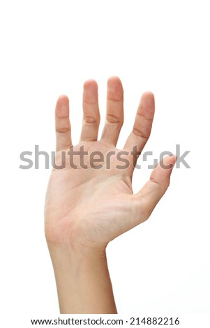 Hand Isolated On White Background.