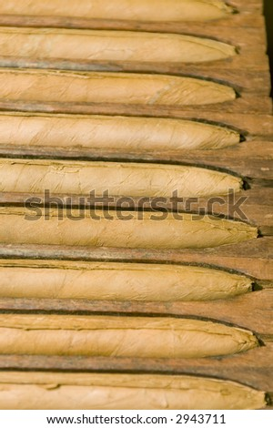 hand made cigars in storage press at custom shop - stock photo