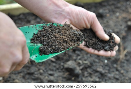 hand man holding a gardening tool full with compost for garden  - stock photo