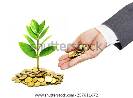 Hand of a businessman giving coins to a tree growing on golden coins - Business with csr practice and environmental concern - stock photo