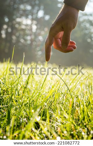 Hand of a man reaching down with his finger to gently touch fresh green grass backlit by the sun in a country meadow in a conceptual image. - stock photo