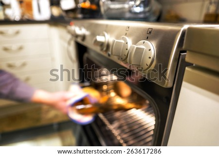 Hand of person taking out hot dish from electric oven in kitchen - stock photo