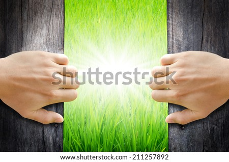 Hand opening the wooden door to found Greenfield and shining light. - stock photo