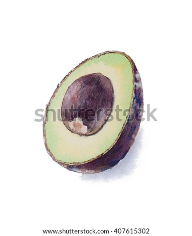 Hand painted watercolor avocado, haas avocado, sliced avocado isolated on white