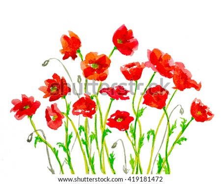 hand painted watercolor red poppies on white made of brush strokes - stock photo