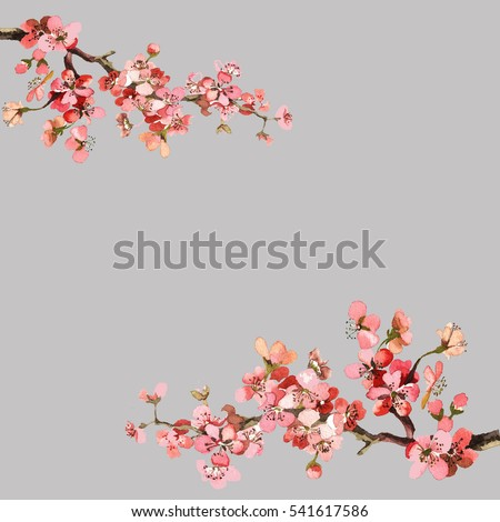 hand painting spring flowers branch watercolor isolated on grey background for greeting cards