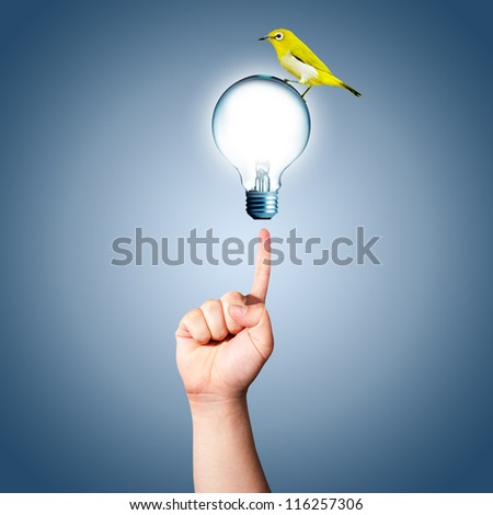 Hand pointing to the light bulb with yellow bird on top - stock photo