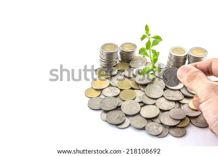 Hand put coins to stack of coins with  trees growing on coins  on white background