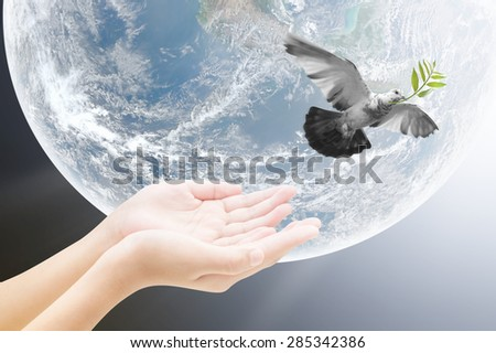 Hand releasing a bird into the air , concept design , Elements of image are furnished by NASA - stock photo