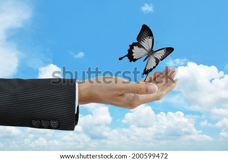 Hand releasing a butterfly  - business abstract - stock photo