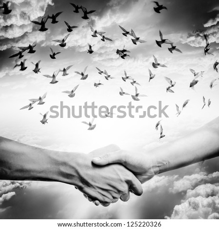 hand shake with dove flying on sky, business concept black and white