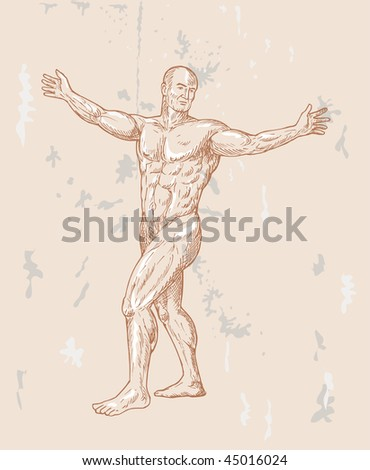 hand sketched illustration of the male human anatomy done in renaissance style. - stock photo