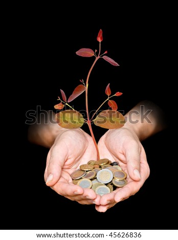Hand with a tree growing from pile of coins - stock photo