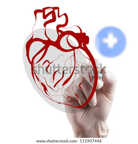 hand with glove draws human heart - stock photo